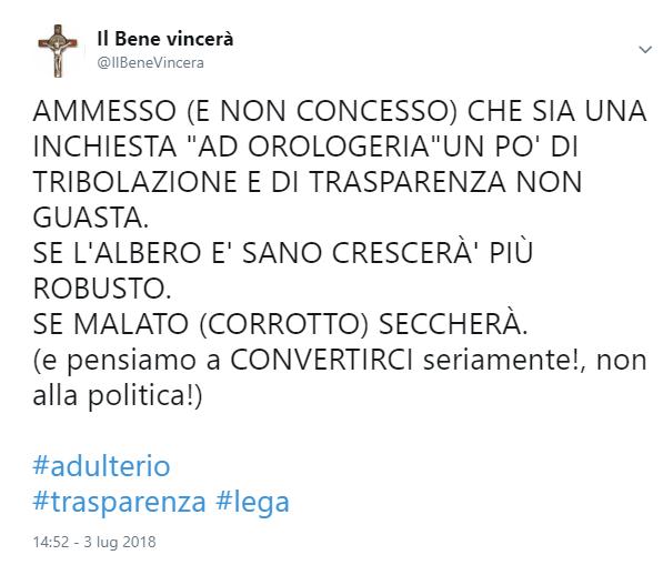 tweet salvinoso